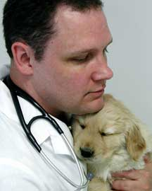 veterinarian-doctor-kevin-mckisson